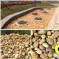 鵝卵石、庭院鋪面鵝卵石、廣東溪流鵝卵石批發