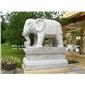 现货石雕大象 石雕大象制作 专业生产石雕神兽