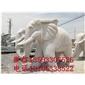 大象,小象,狮子,pk10助赢雕刻