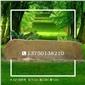 安徽低价品质上乘黄蜡石造景湖北优质景观石价格实惠校园