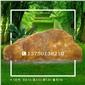 福建大型黄蜡石色彩绚丽细腻景盛园艺奇石场门牌石 刻字石价格