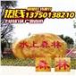 广东最大景观奇石场 黄蜡石细腻 自然风景石企业单位小区