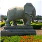 g654花岗岩石雕大象,大象,石头大象