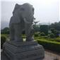 大象石雕,大象,石头大象,汉白玉大象