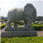石雕动物♀石头象