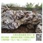 产地大量批发大英石 大英石假山 景观石
