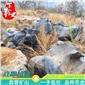 厂家批发 太湖石 园林景观石 假山石