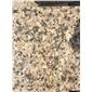 金鉆玫瑰、金色玫瑰、路易金鉆、阿拉善卡拉麥里金,阿拉善黃15204830781