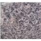 豹皮花石材13808146817