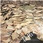 乱型石板 黄木纹板岩碎拼 河北护坡石 虎皮石碎拼