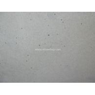 灰白色砂巖