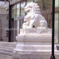 曲阳石雕狮子雕塑