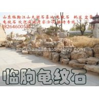 龟纹石 临朐龟纹石 龟纹石基地
