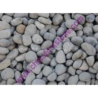 海卵石 SEA PEBBLES(SMALL