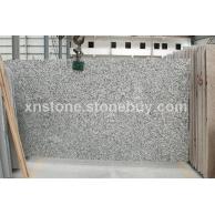 大白花砂锯大板  G439