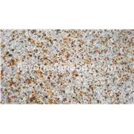 汶上锈石厂家,黄锈石,米黄色石材生产价格