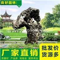公園太湖石
