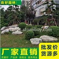 公园泰山石造景